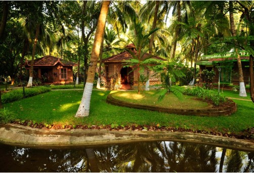 Yoga Holiday in Kerala; 16-20 Feb 2016