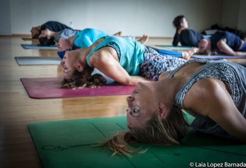 Sept. 20th – Nov. 30th 2019, Weekend format, RYT-200 Yoga Teacher Training